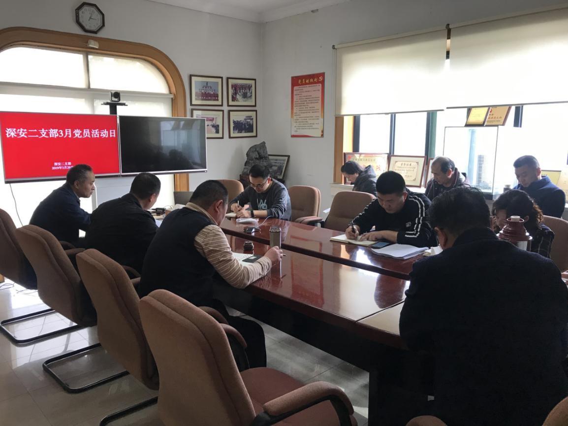 深安二支部开展3月党员活动日活动